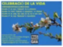 cartell rituals primavera 2020.jpg