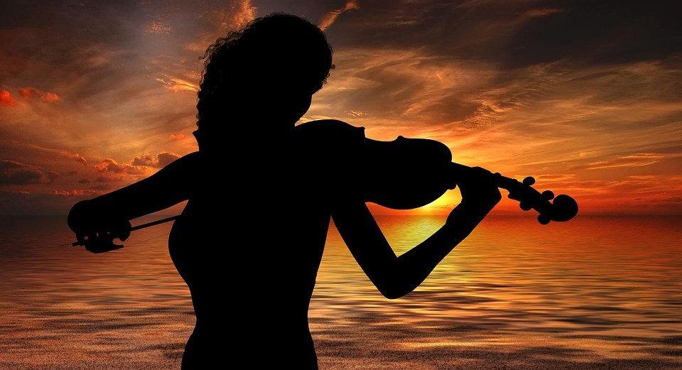 violinist-violinist-3351494_960_720.jpg