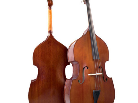 Upright Basses now in stock from $899!