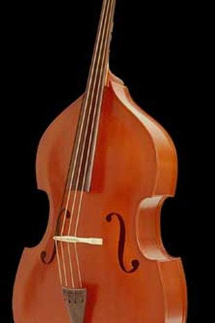 Palatino Model 4 Bass