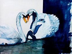 swans-youandme