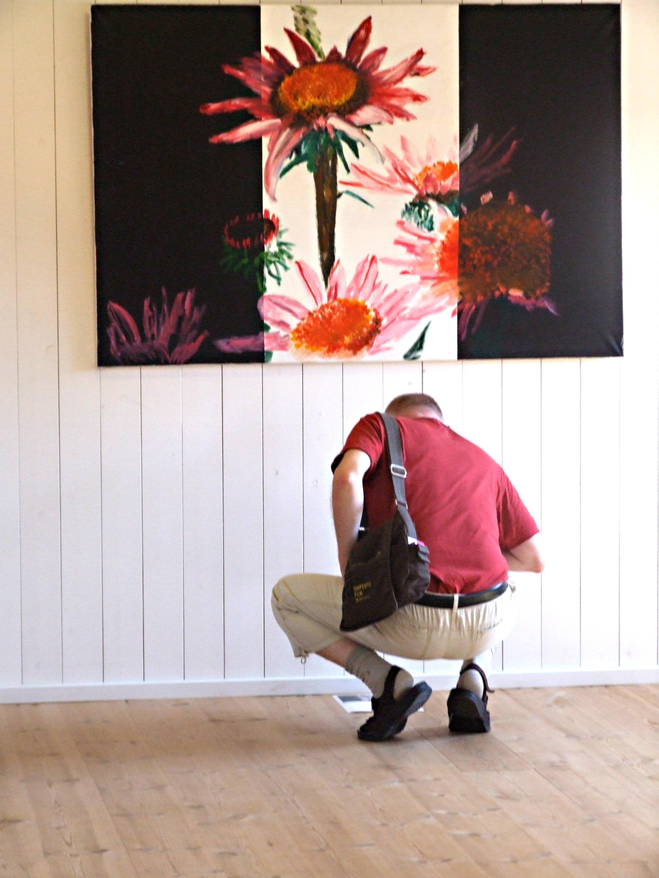 Echinacea - Rød Solhat