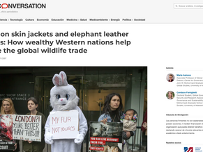 Python skin jackets and elephant leather boots: How wealthy Western nations help drive the global wi