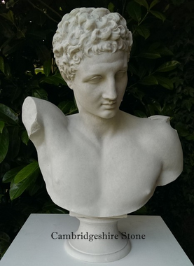 Cast Marble Bust of Hermes.png