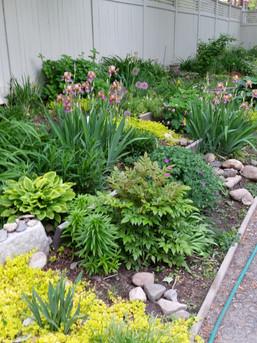 Sussman House Gardens