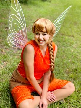 The Animal Fairy