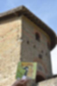 DSC_2255 Gayle visits Carcassonne, Franc