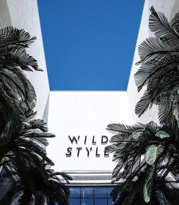 wilstyle_logo_pic.jpg