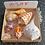 Thumbnail: SWFL Shell Collection Starter Kit Featuring Albino Lightning Whelk