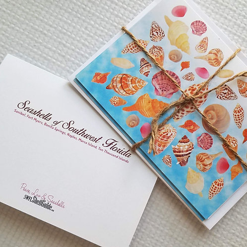 Note Cards - Seashells of SWFL - Set of 10