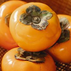 Orange14.jpg