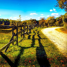 Country path and split rail fence to inspire creativity