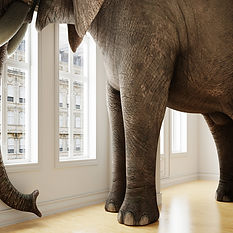 An elephant standing in an office to inspire creativity
