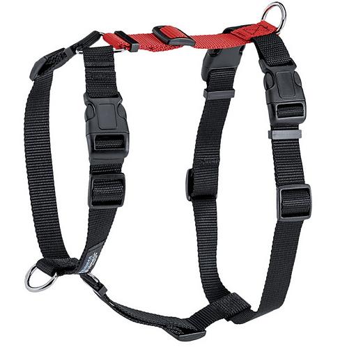 Balance Harness- Buckle Neck