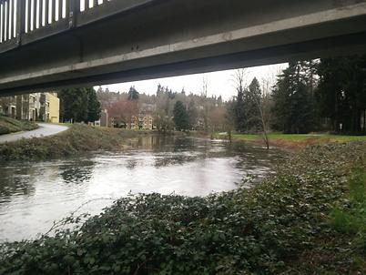 Bear Creek with Bridge.png
