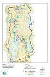 Salmon Habitat - Lower Green Duwamish