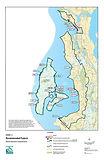 Salmon Habitat - Marine Nearshore