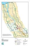 Salmon Habitat - Lower Duwamish Estuary