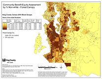 King County - Forest Canopy by % Non-white