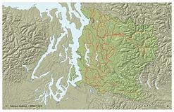 Puget Sound Salmon Spawning Distribution