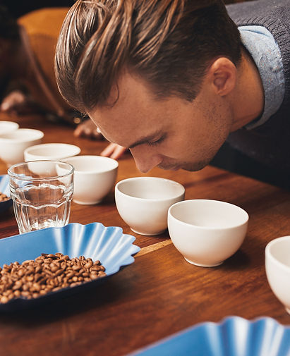 Rows of cups and beans with baristas sme