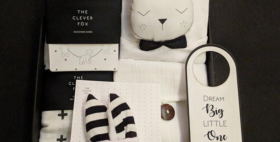 The Bear Plush Box