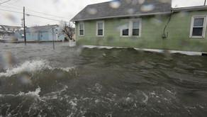 City Flood Services