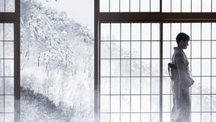 ©Philip_Lee_Harvey_Japan_Steam.jpg