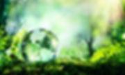ekologicheskiy_sertifikat.jpg