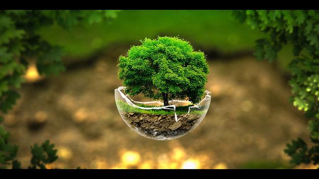 the_tree_sphere_by_slavory-d6cej2z.jpg