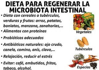 Dieta para la flora intestinal danada