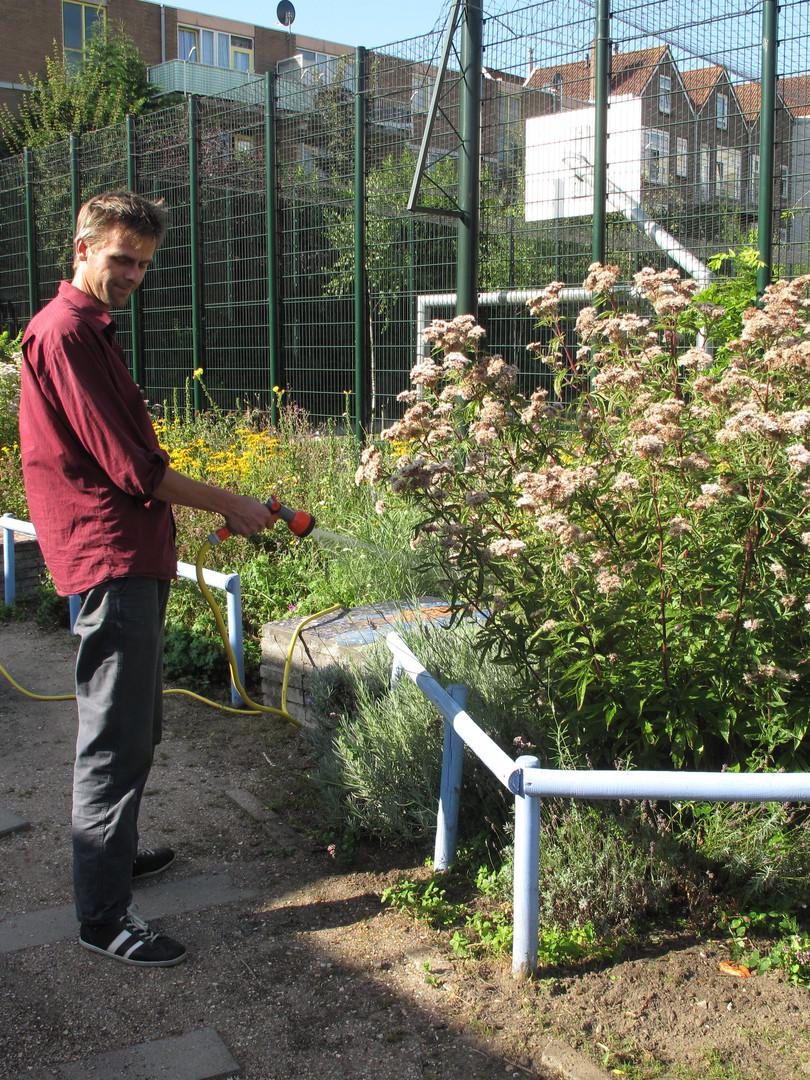 arend-oleander 002.JPG