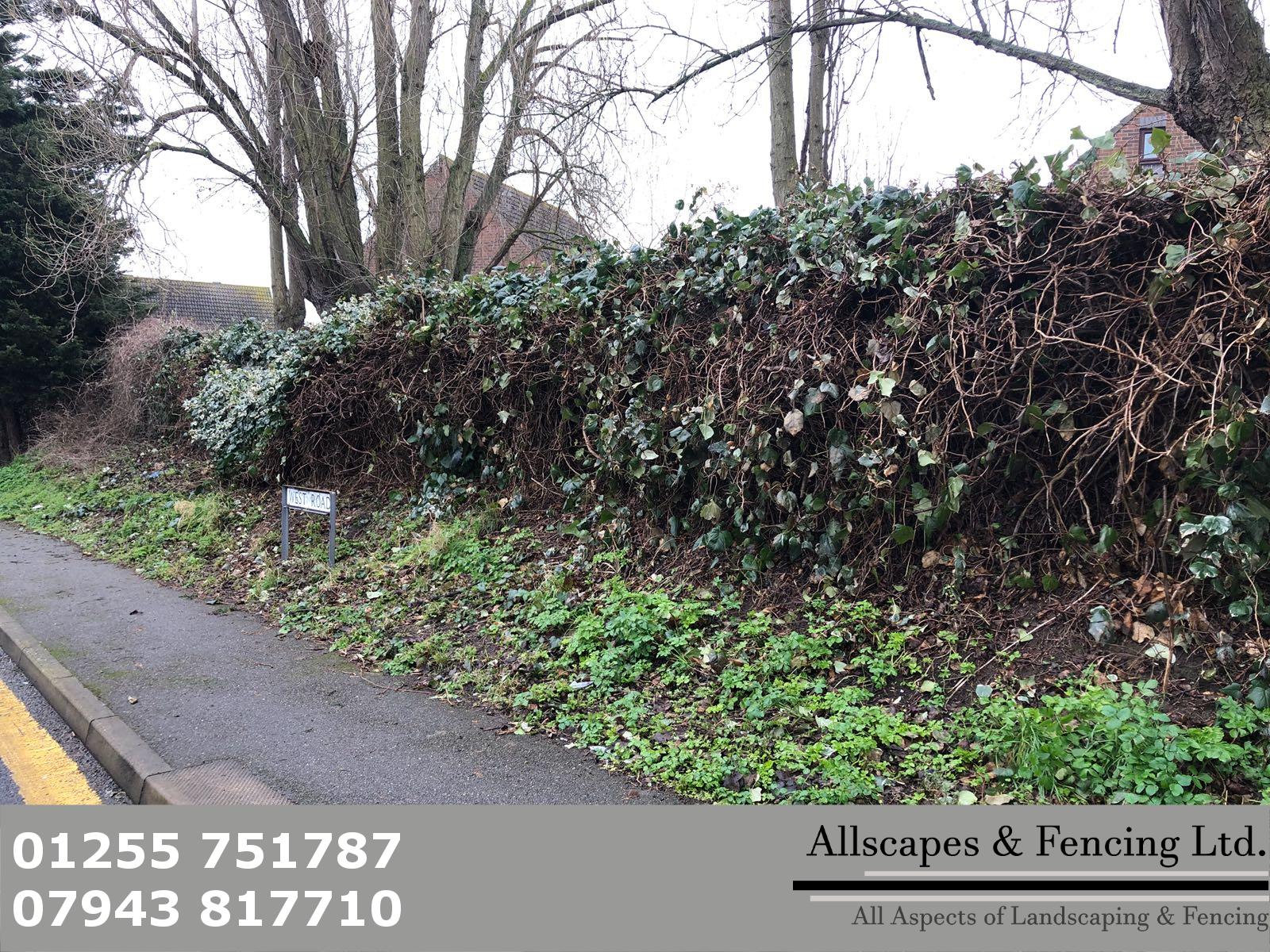 Fencing Clacton (7)