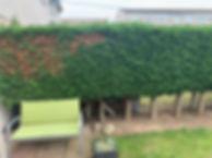 Professional garden net fencing in Clacton