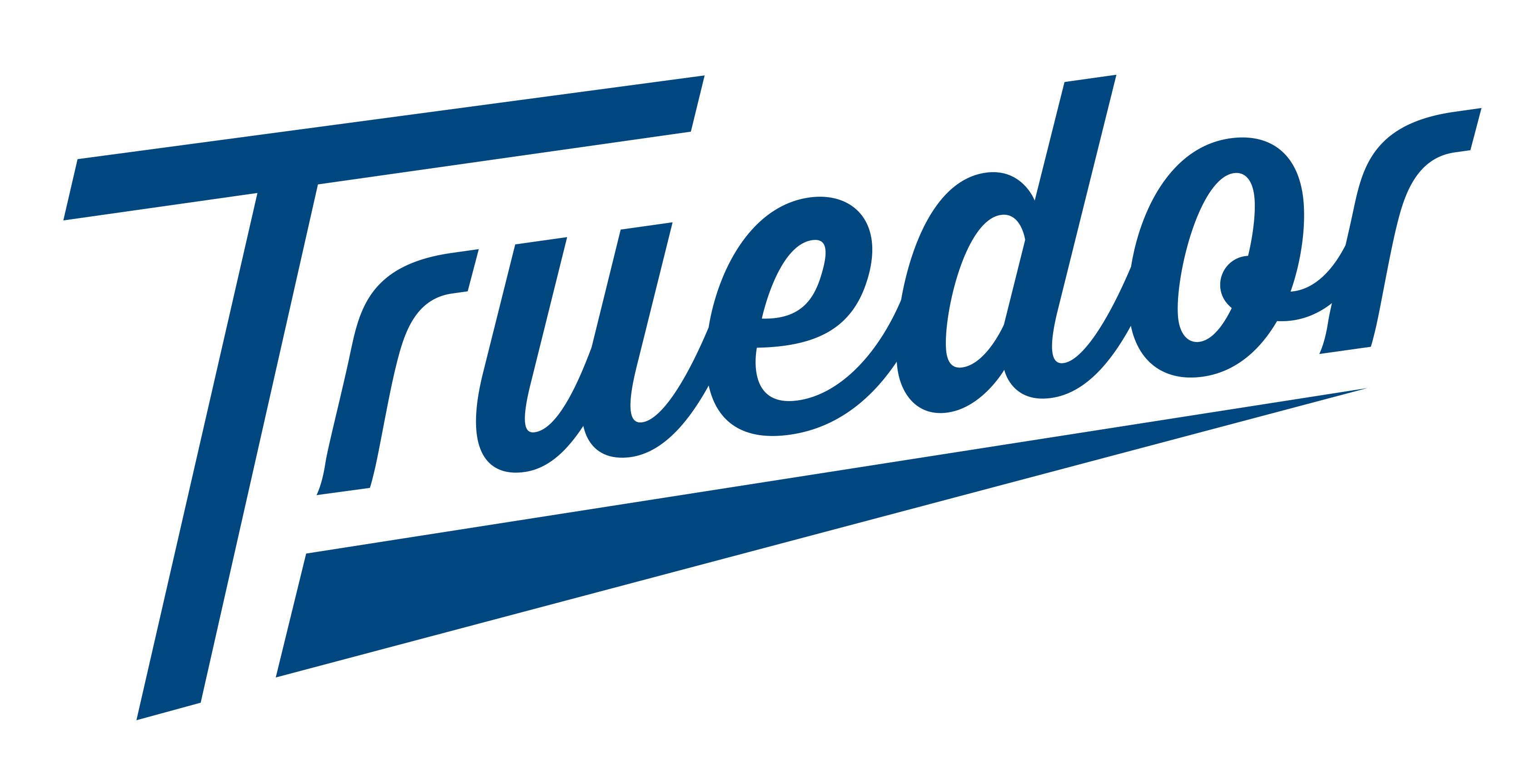 Truedor-Logo-COL-2-large