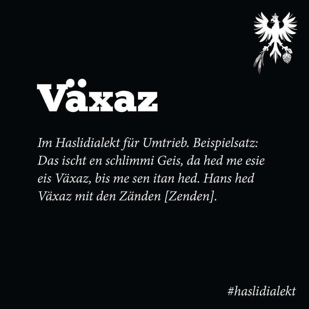 #haslidialekt-06.png