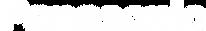 Panasonic Logo White.png