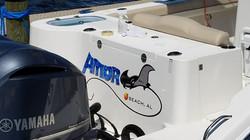 amoray boat2