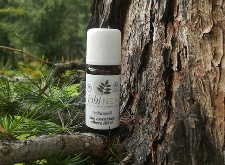 Teebaumöl - die kleinste natürliche Apotheke der Welt