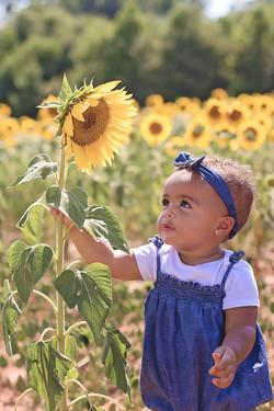 Naomi Sunflowers_0238