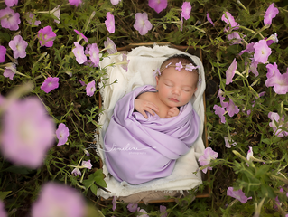 Panama City Newborn Photographer | Shelby