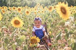 Naomi Sunflowers_0143