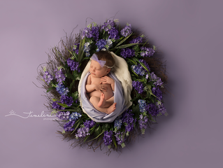 Lynn Haven Newborn Photographer | Madison