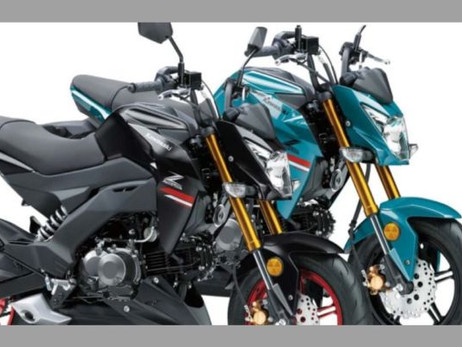 2021 KAWASAKI Z125 PRO GETS NEW COLOR OPTIONS | Automotive News | Auto Reporter