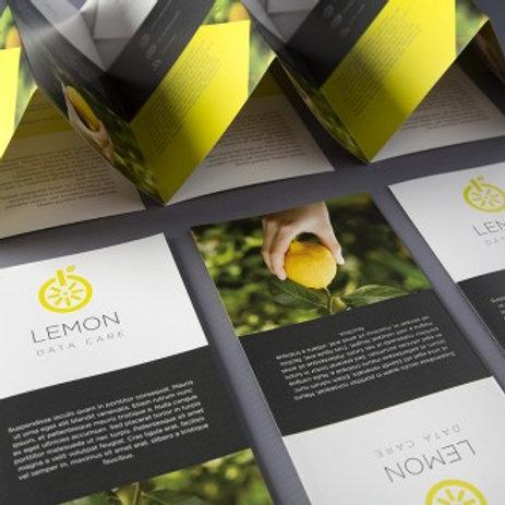1000 A5 Folded Leaflets - Long Run