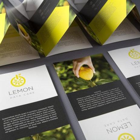 100 A5 Folded Leaflets - Short Run*