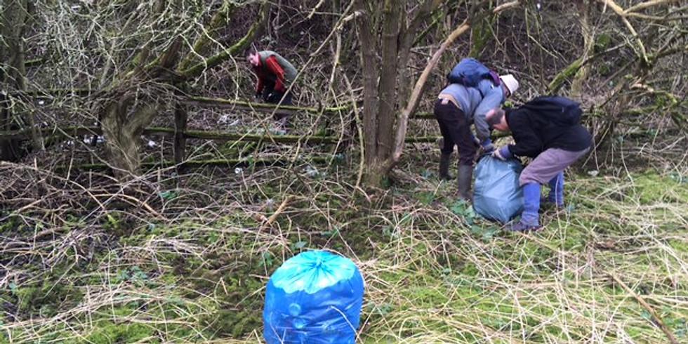 Litter Picking:  Forest Glen