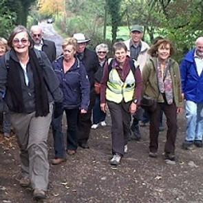 11. Wellington Walking for Health