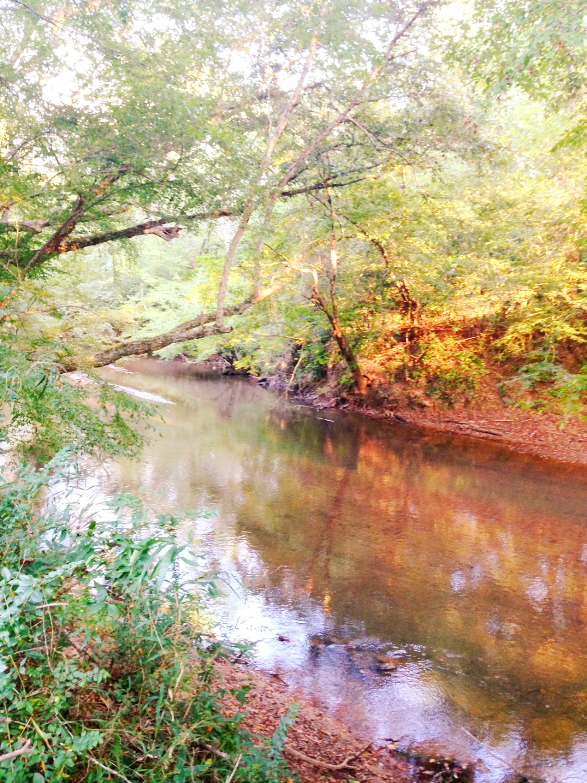 Twelve Mile River