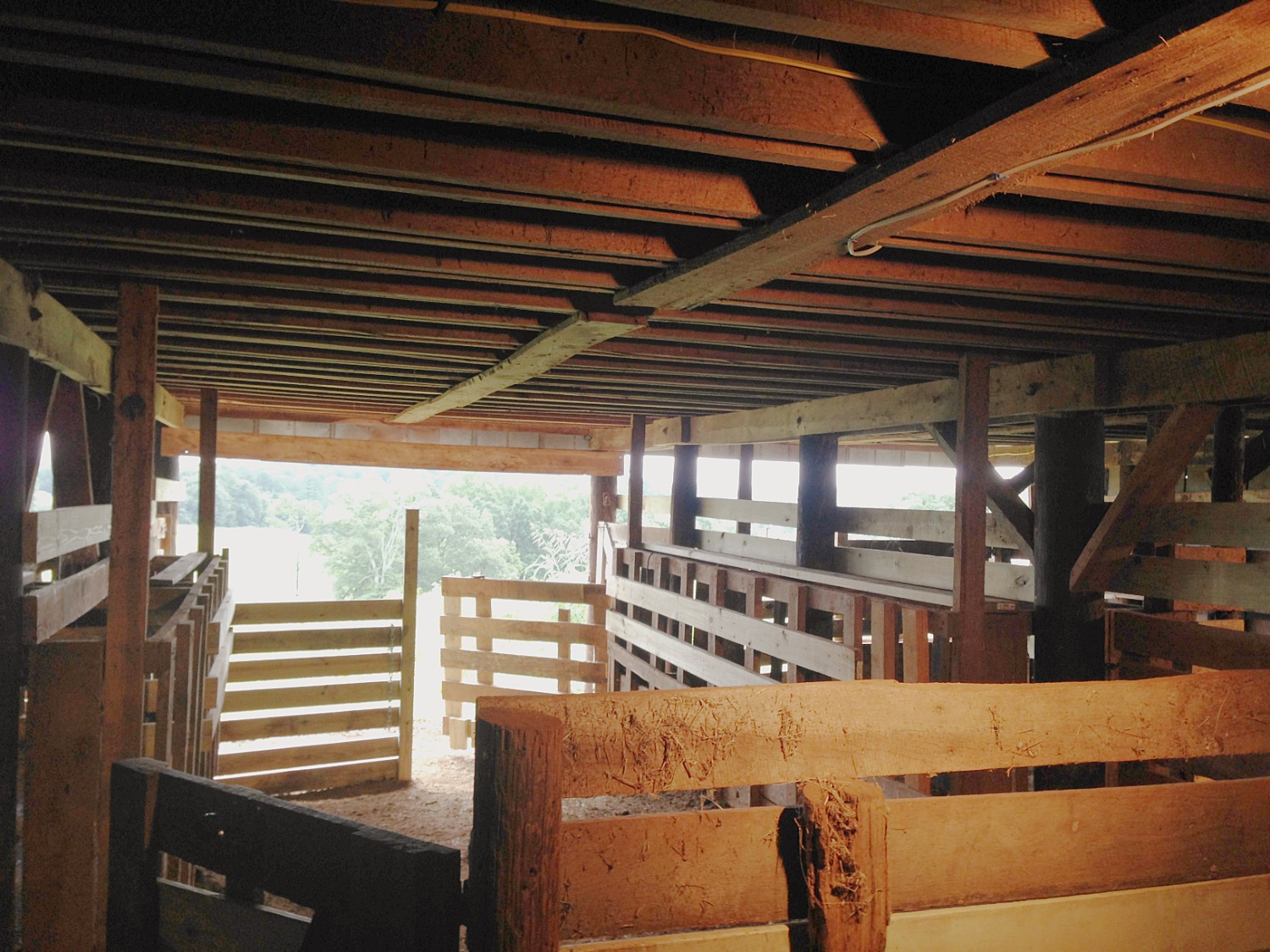 20x10' stalls behind with front gate